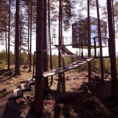 Tree Hotel детские мероприятия