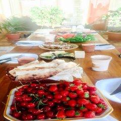 Отель Guesthouse Şara Talyan питание