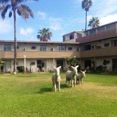 Hotel Bahia фото 3