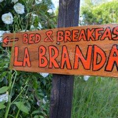 Отель La Branda Италия, Шампорше - отзывы, цены и фото номеров - забронировать отель La Branda онлайн приотельная территория