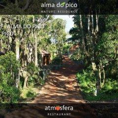 Отель Alma do Pico Португалия, Мадалена - отзывы, цены и фото номеров - забронировать отель Alma do Pico онлайн фото 3