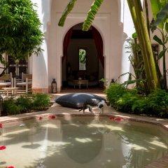 Отель Le Riad Berbere Марокко, Марракеш - отзывы, цены и фото номеров - забронировать отель Le Riad Berbere онлайн фото 3