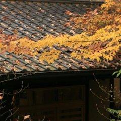 Отель Kurokawa Onsen Ryokan Wakaba Минамиогуни фото 7