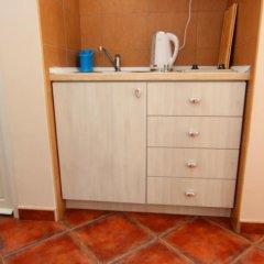 Апартаменты Mila & Aleksandr Apartments удобства в номере фото 2