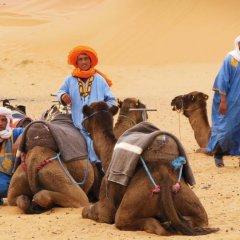 Отель Morocco Desert Trek Марокко, Мерзуга - отзывы, цены и фото номеров - забронировать отель Morocco Desert Trek онлайн приотельная территория