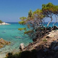 Hotel Alexandros Ситония пляж