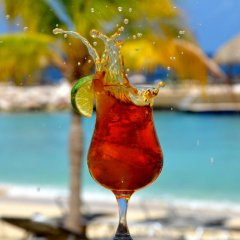 Отель Blue Bay Curacao Golf & Beach Resort бассейн