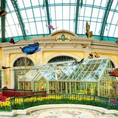 Отель Bellagio детские мероприятия фото 2