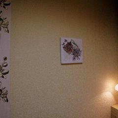 Мини-отель Кубань Восток Стандартный номер с двуспальной кроватью фото 20