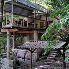 Отель La Moskitia Ecoaventuras Гондурас, Луизиана Ceiba - отзывы, цены и фото номеров - забронировать отель La Moskitia Ecoaventuras онлайн фото 9