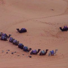 Отель Riad Kemkem Марокко, Мерзуга - отзывы, цены и фото номеров - забронировать отель Riad Kemkem онлайн пляж