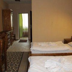 Гостиница Горянин Номер Делюкс с различными типами кроватей фото 7