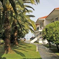 Отель Miramare Hotel Греция, Ситония - отзывы, цены и фото номеров - забронировать отель Miramare Hotel онлайн фото 9