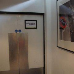 Отель Safestay London Kensington Holland Park Великобритания, Лондон - 1 отзыв об отеле, цены и фото номеров - забронировать отель Safestay London Kensington Holland Park онлайн удобства в номере фото 2
