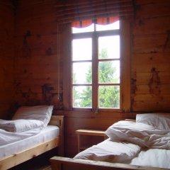 Demircioglu Pokut Dag Evi Стандартный номер с 2 отдельными кроватями (общая ванная комната)