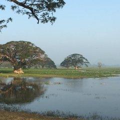 Отель Lake View Cottage Шри-Ланка, Тиссамахарама - отзывы, цены и фото номеров - забронировать отель Lake View Cottage онлайн приотельная территория фото 2