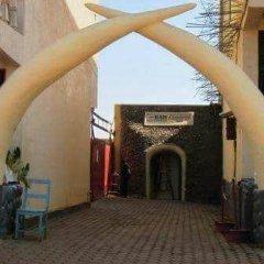 Отель Rubava Motel в Заповеднике Nyungwe Forest Reserve