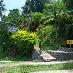 Отель Gecko Lodge Fiji Савусаву фото 4