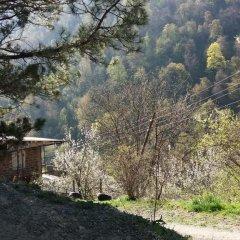 Отель Arami House Армения, Дилижан - отзывы, цены и фото номеров - забронировать отель Arami House онлайн фото 8