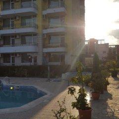 Отель Breeze Apartments Болгария, Солнечный берег - отзывы, цены и фото номеров - забронировать отель Breeze Apartments онлайн бассейн