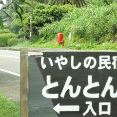 Отель Iyashi no Minshuku Tonton Якусима приотельная территория фото 2