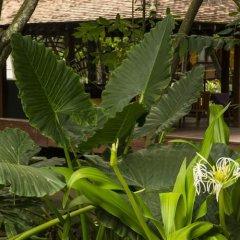 Отель Royal Palms Beach Hotel Шри-Ланка, Калутара - отзывы, цены и фото номеров - забронировать отель Royal Palms Beach Hotel онлайн фото 11