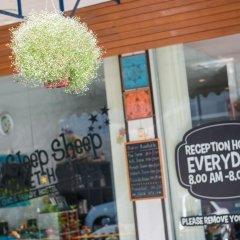 Sleep Sheep Phuket Hostel гостиничный бар