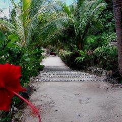 Отель Fare Arana Французская Полинезия, Муреа - отзывы, цены и фото номеров - забронировать отель Fare Arana онлайн пляж
