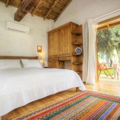 Бутик-отель Ephesus Lodge Стандартный номер с различными типами кроватей фото 4