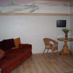 Гостиница Melnitsa Inn Номер Делюкс двуспальная кровать фото 6