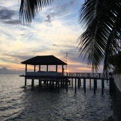 Отель Taharuu Surf Lodge Французская Полинезия, Папеэте - отзывы, цены и фото номеров - забронировать отель Taharuu Surf Lodge онлайн приотельная территория