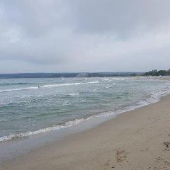 Отель Plamena Palace пляж