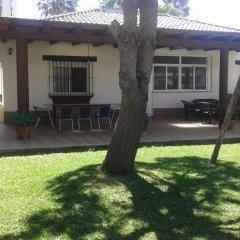 Отель Complejo Rural Entre Pinos Испания, Вехер-де-ла-Фронтера - отзывы, цены и фото номеров - забронировать отель Complejo Rural Entre Pinos онлайн фото 4