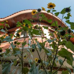 Отель Izvora Болгария, Кранево - отзывы, цены и фото номеров - забронировать отель Izvora онлайн фото 10