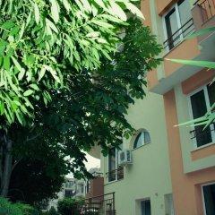 Отель Dalia Болгария, Несебр - отзывы, цены и фото номеров - забронировать отель Dalia онлайн фото 12