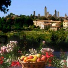 Отель Locanda Viani Италия, Сан-Джиминьяно - отзывы, цены и фото номеров - забронировать отель Locanda Viani онлайн приотельная территория