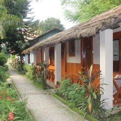 Отель Chitwan Forest Resort Непал, Саураха - отзывы, цены и фото номеров - забронировать отель Chitwan Forest Resort онлайн фото 4