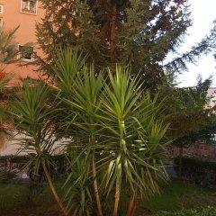 Отель C'è posto per te Италия, Рим - отзывы, цены и фото номеров - забронировать отель C'è posto per te онлайн фото 2