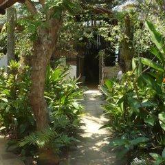 Отель Caribbean Coral Inn Tela Гондурас, Тела - отзывы, цены и фото номеров - забронировать отель Caribbean Coral Inn Tela онлайн фото 4