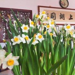 Отель Hutong Impressions Beijing Guesthouse Китай, Пекин - отзывы, цены и фото номеров - забронировать отель Hutong Impressions Beijing Guesthouse онлайн интерьер отеля