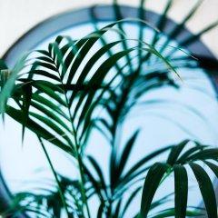 Отель The Athens Mirabello Греция, Афины - 1 отзыв об отеле, цены и фото номеров - забронировать отель The Athens Mirabello онлайн интерьер отеля