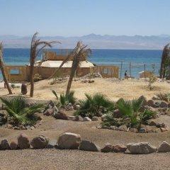 Отель Bella Sina Beach Lodge Стандартный номер с различными типами кроватей