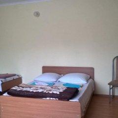 Гостевой дом Простор Стандартный номер с различными типами кроватей фото 14