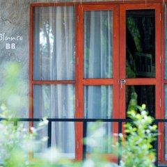 Blanco Hostel at Lanta Кровать в общем номере с двухъярусной кроватью фото 3