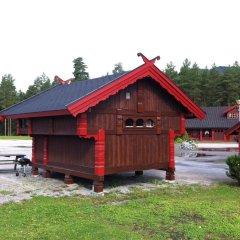 Отель Bø Camping og Hytter Стандартный номер с различными типами кроватей фото 4
