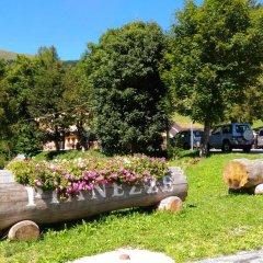 Отель Residence Miravalle e StellAlpina Вальдоббьадене с домашними животными