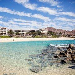 Отель Hilton Los Cabos Beach & Golf Resort 4* Люкс с различными типами кроватей
