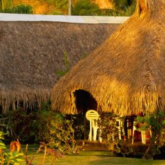 Отель Hibiscus Французская Полинезия, Муреа - отзывы, цены и фото номеров - забронировать отель Hibiscus онлайн фото 9