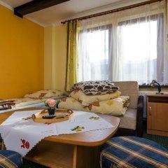 Отель Willa Marysieńka Стандартный номер фото 15