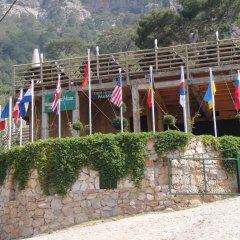 Отель Tree Houses детские мероприятия